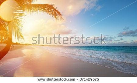 cupom Shutterstock