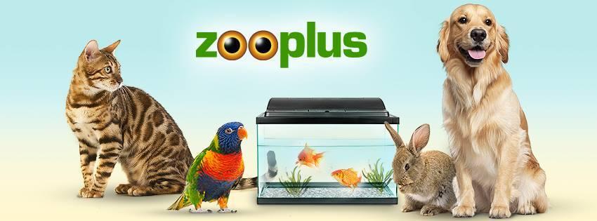 Zooplus kod rabatowy Fakt