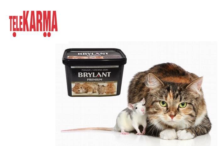 telekarma kody i kupony dla kotów i gryzoni