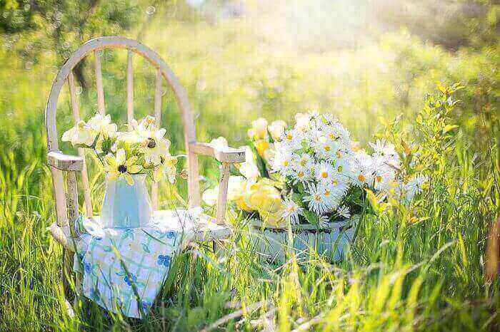 ogrod kwiatowy kupon rabatowy kupon