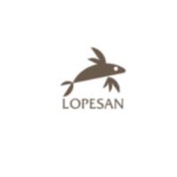 Código desuento Lopesan Hoteles